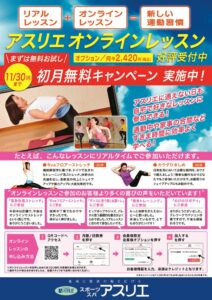 2011_athlie_online_A4のサムネイル